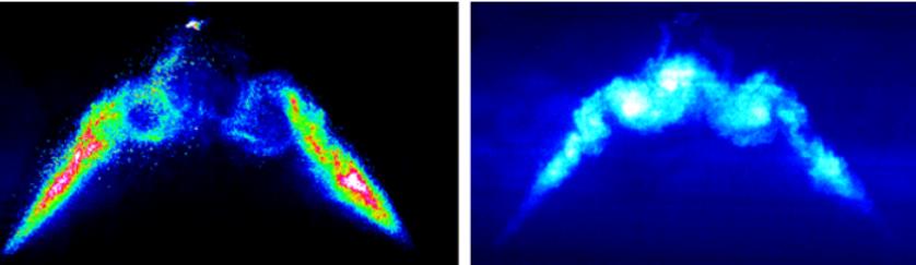 Image of gasoline-like sprays