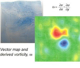 image of vector map and derived vorticity